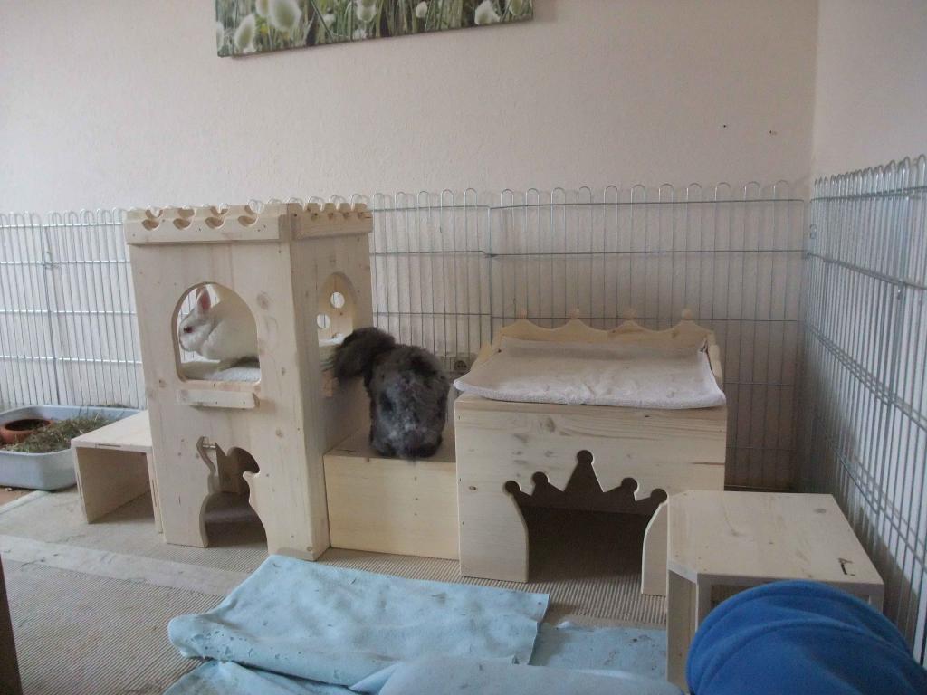 haltung von kaninchen und meerschweinchen tierheim bad kreuznach. Black Bedroom Furniture Sets. Home Design Ideas